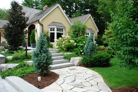 house and backyard Landscape